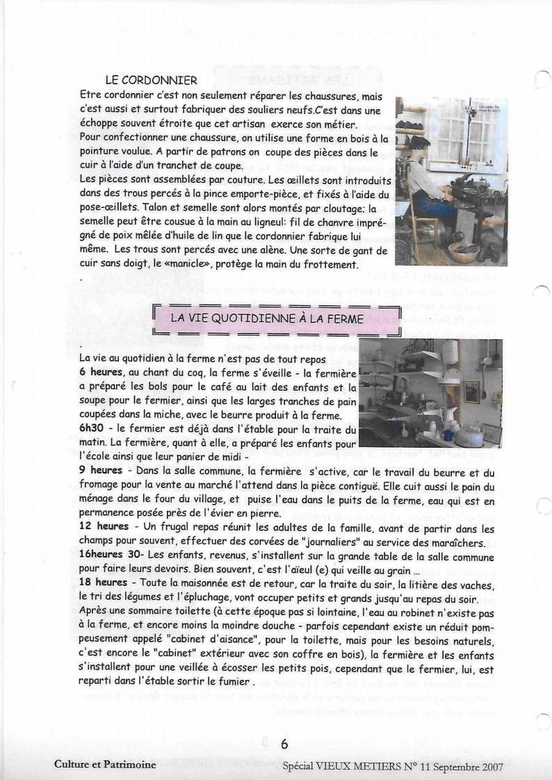 N°11.pdf_page_6